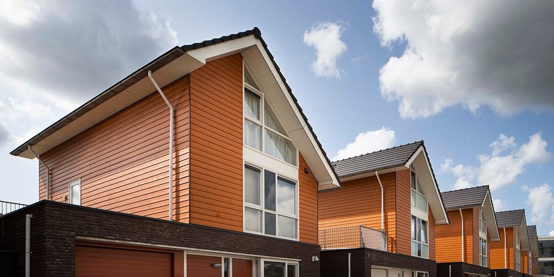 Brielle NL Cedral Lap Wood custom colour